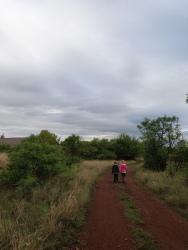 Taking a walk in the bushveld